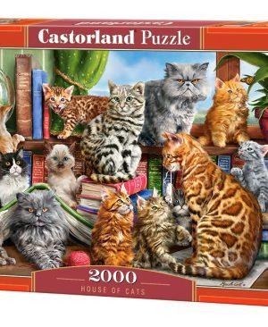 Puzzel Castorland_200726