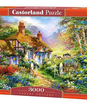 Puzzel Castorland_300402
