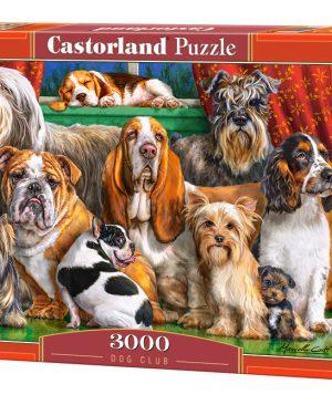Puzzel Castorland_300501
