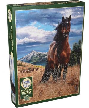 Freedom 80109 puzzel 1000 stuks Cobble Hill