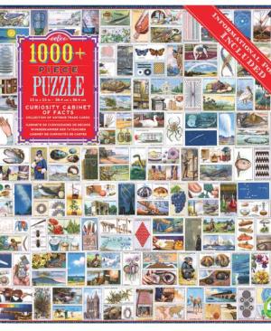 Curiosity Cabinet - puzzel 1000 stuks - eeBoo 8387