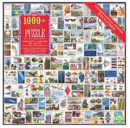 Curiosity Cabinet  – puzzel 1000 stuks – eeBoo 8387