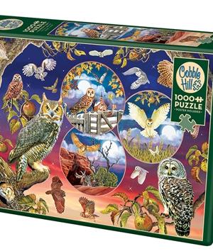 Owl Magic - puzzel 1000 stuks - Cobble Hill