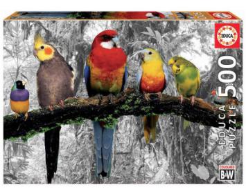 Birds on the Jungle – puzzel 500 stuks – Educa 17984