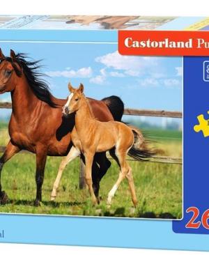 Mare and Foal - puzzel 260 stuks - Castorland