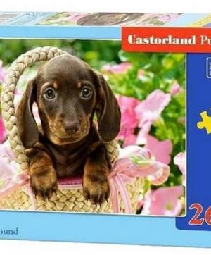 Cute dachshund - puzzel 260 stuks - Castorland